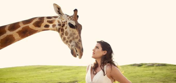 Sara_France_Giraffe by sarafrance - I Heart Animals Photo Contest