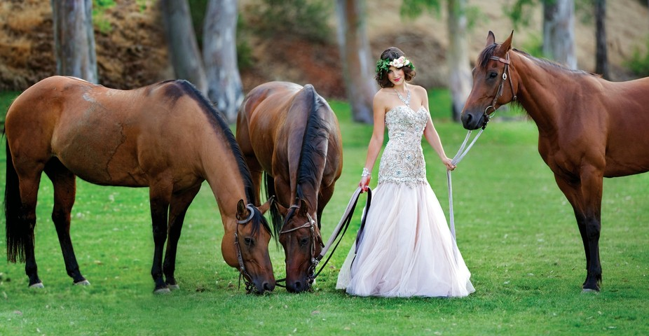 This cover shoot for Exquisite weddings was so much fun to shoot because of the incredible animal...