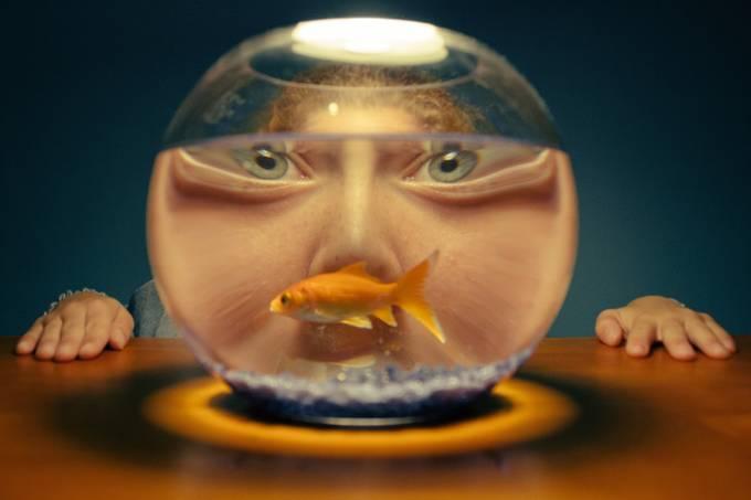 Golden Eye by mitchellrichards - I Heart Animals Photo Contest