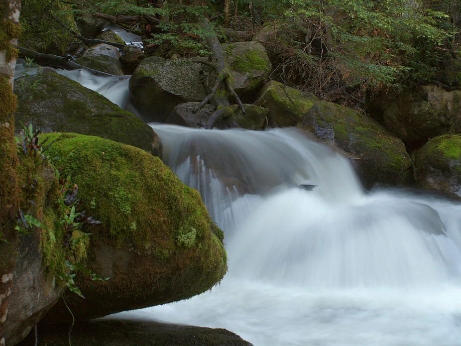 Waterfall in fern gully at Marysville, Australia.