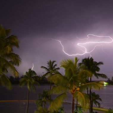 Unretouched image of bolts of lightning against a night lit palm tree sky