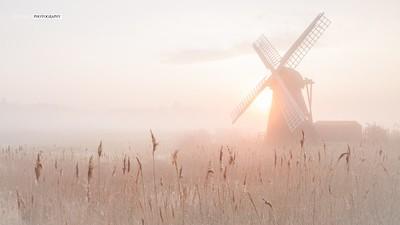 Misty Herringfleet Windmill