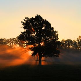 Taken in Niagara Canada. 
