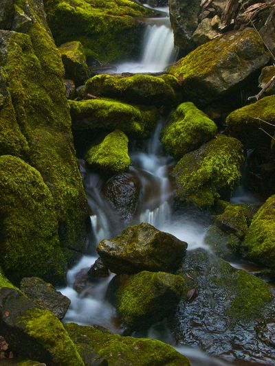 Water over moss-covered rocks