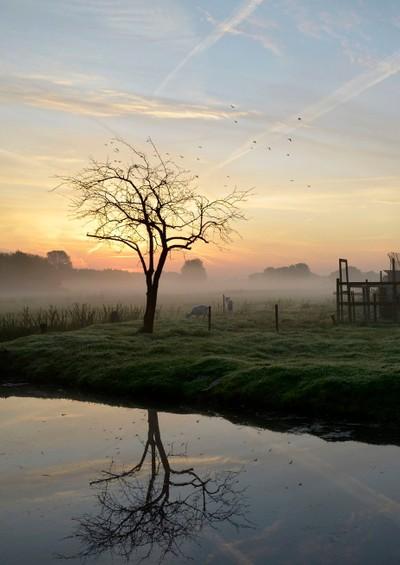 Kortenhoef (The Netherlands), just before sunrise