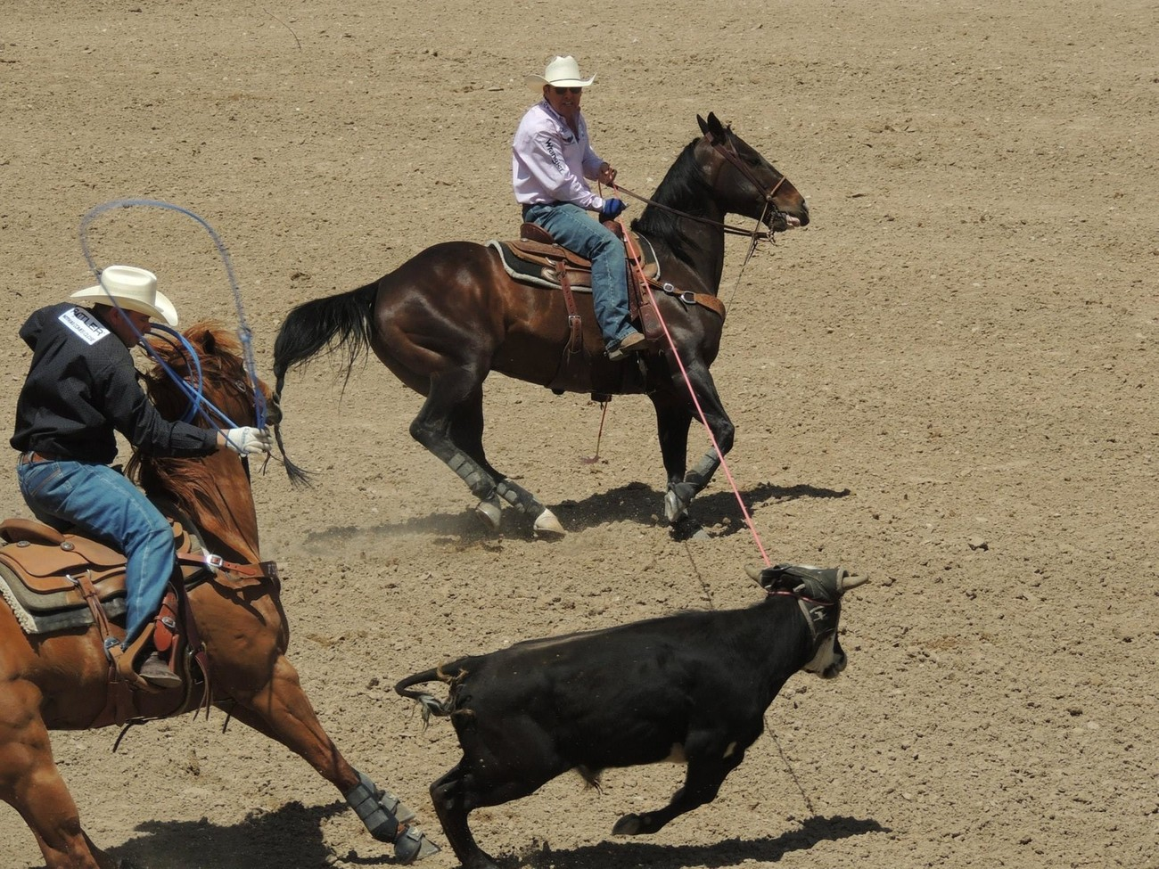 Trevor Brazile and Travis Graves team roping at the Guymon Pioneer Days Rodeo