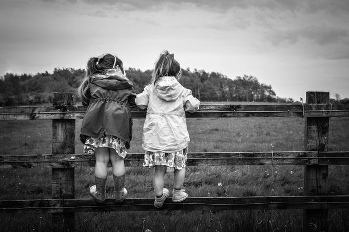Just my girls on a fence..... by PaulMcCarthyPhotography