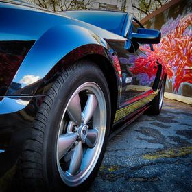 Graffiti reflecting into the black paint of a 2006 Shelby Mustang GT-H