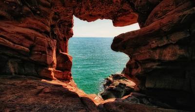 Seahorse Cove