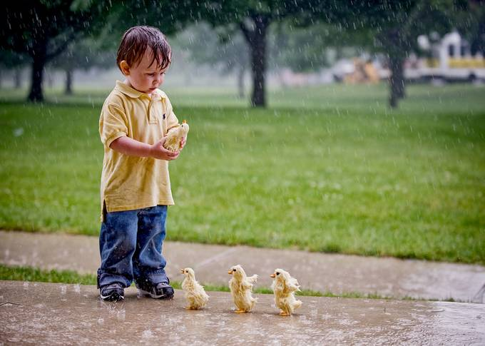 Making Friends by tressiedavis - Children and Animals Photo Contest