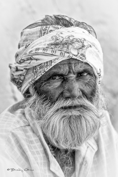 Man Of Gujarat #2
