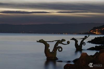 Seahorses night ride | La chevauchée nocturne des hippocampes