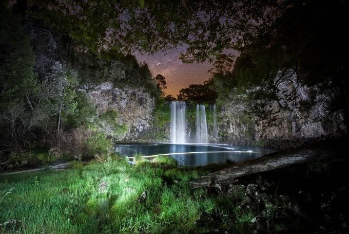 Dorrigo by Dan2452 - Dark Forest Photo Contest
