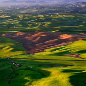 The famous Rolling Hills of the Palouse, Washington