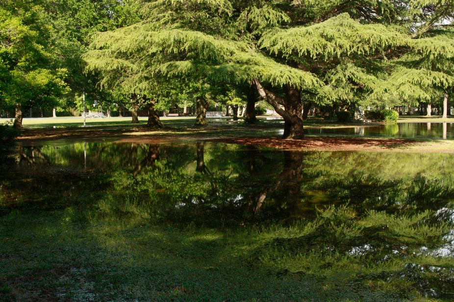 After a great storm, I went about my day. I came across a flooded park. I returned with my camera...