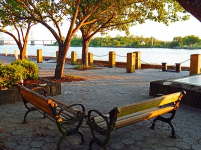 Bench on the Cape Fear River