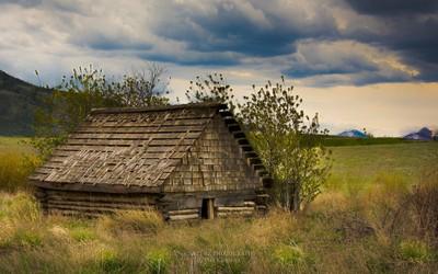 The Little Cabin copy