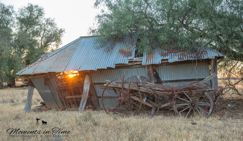 As the sun sets peacefully shining its rays threw the old shed door the shed leans over as posts ...