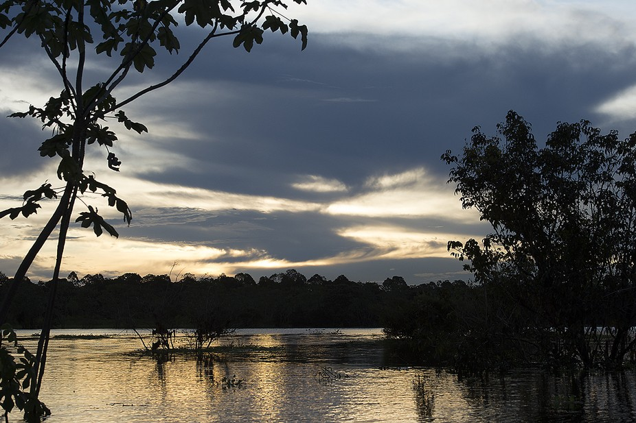 Sunset taken from a boat on the Flooded Amazon Rainforest