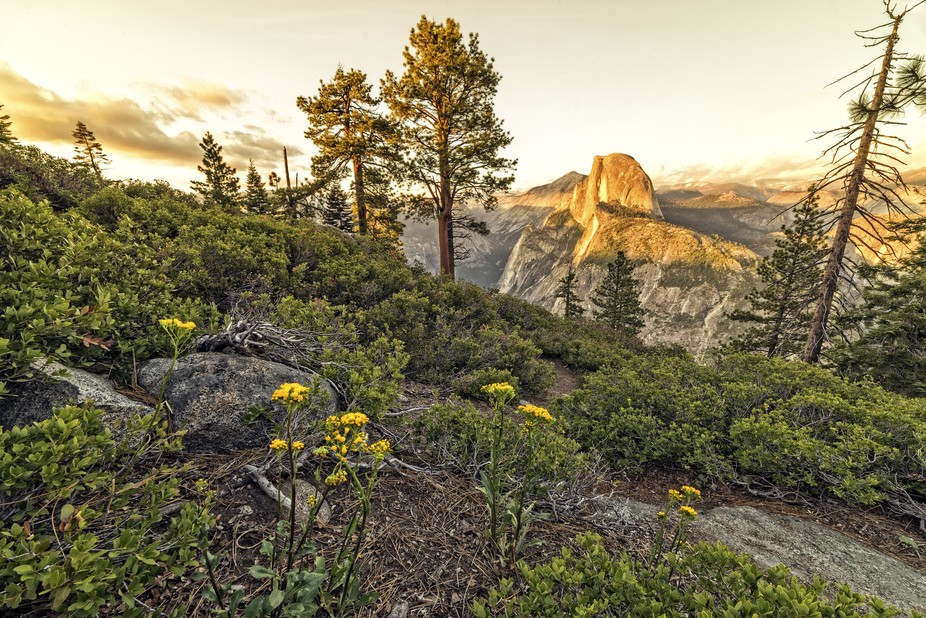 Half Dome at Sunset from Glacier Point in Yosemite National Park, California