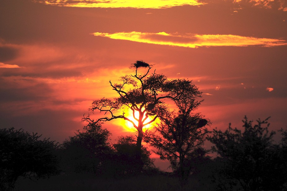 Sun set in the Kruger Park South Africa