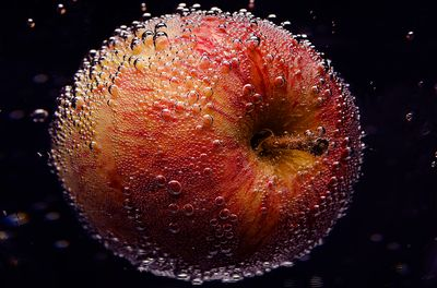 an apple in the darkness