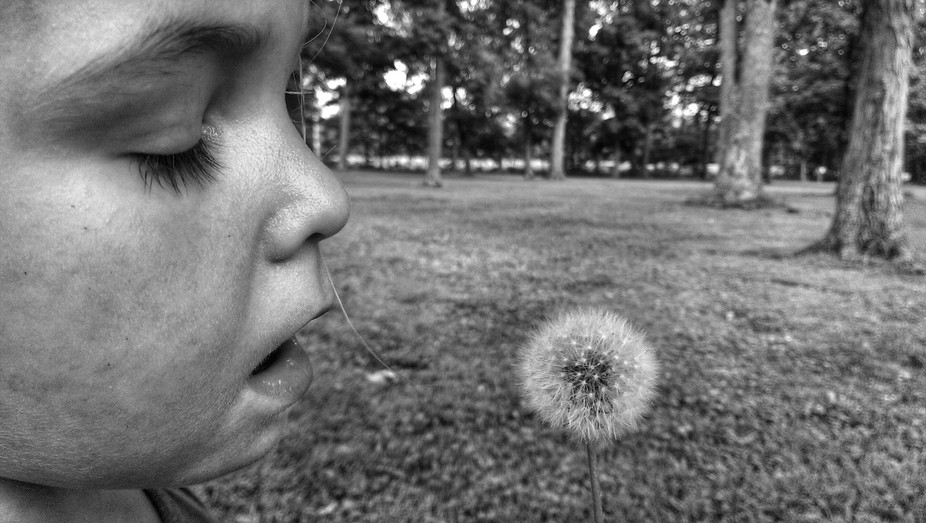 ..caught her in the moment before her breath touched the dandelion!