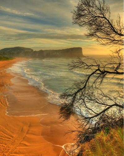 There Is Always Avalon - Avalon Beach Sydney Australia