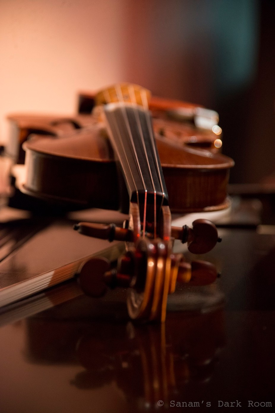 Violin by SanamsDarkRoom - Musical Instruments Photo Contest