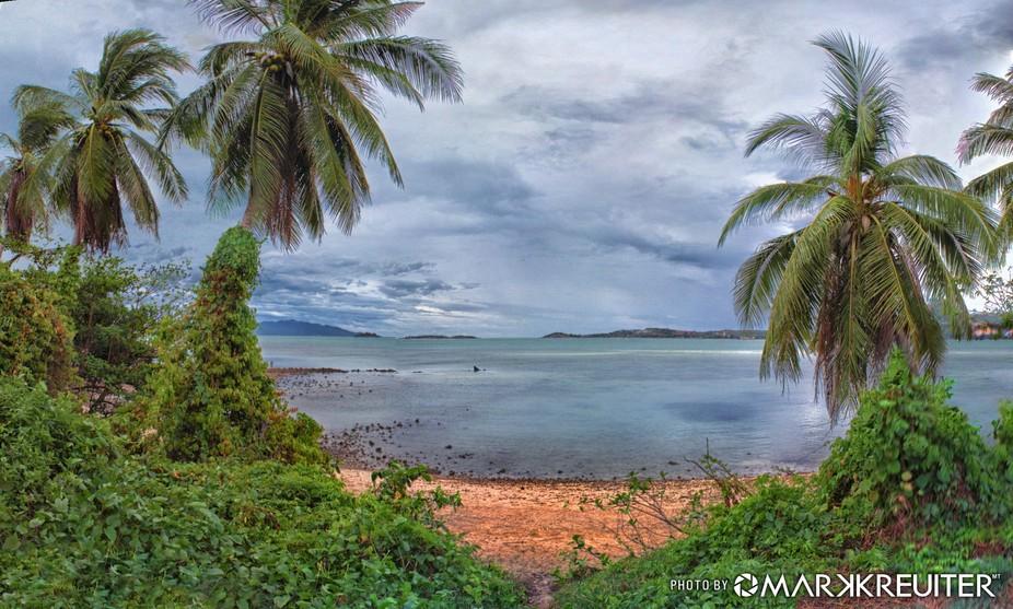 Jungle meets beach