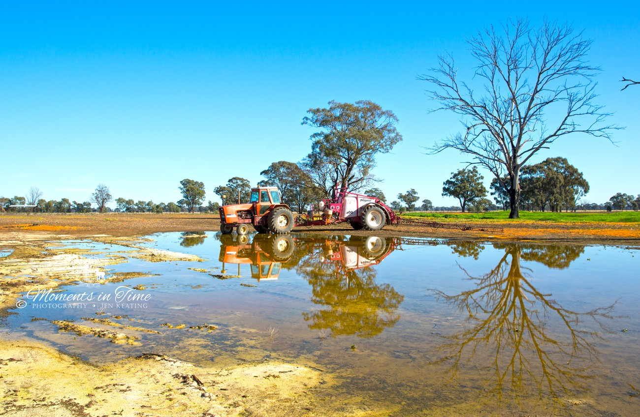 As the water slowly drys up couldn't resist capturing the reflections here of tractor & trees.