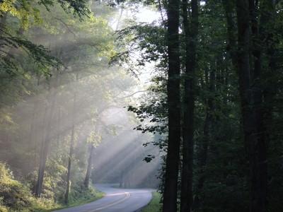 Smoky Mountain sun rays