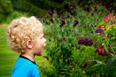 The Boy and the Butterfly UR2A1561