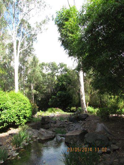 ipswich gardens 426