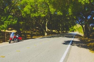 oil painting bike on side of road