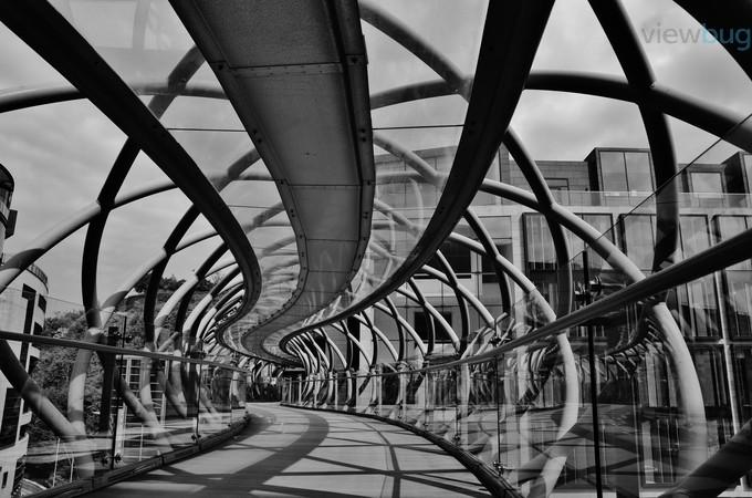 by kamilasliwinska - Metallic Matter Photo Contest