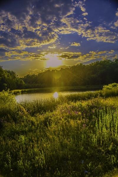 Pond light show