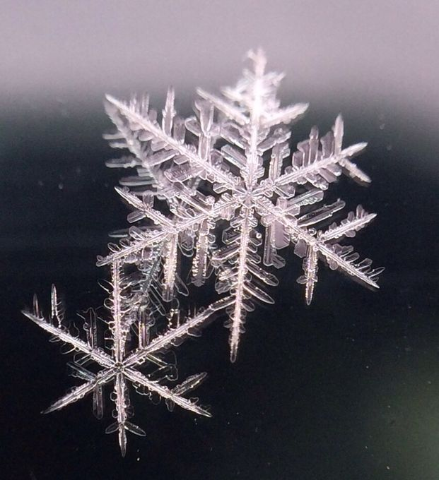 So small by Stacyfiller - Snowflakes Photo Contest