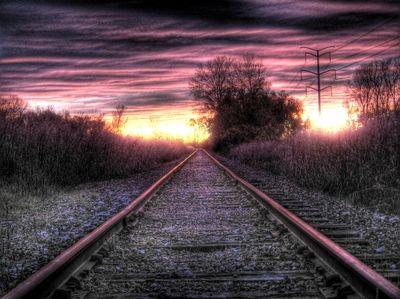 Pink Tracks