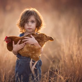 A little boy holds his pet hen.