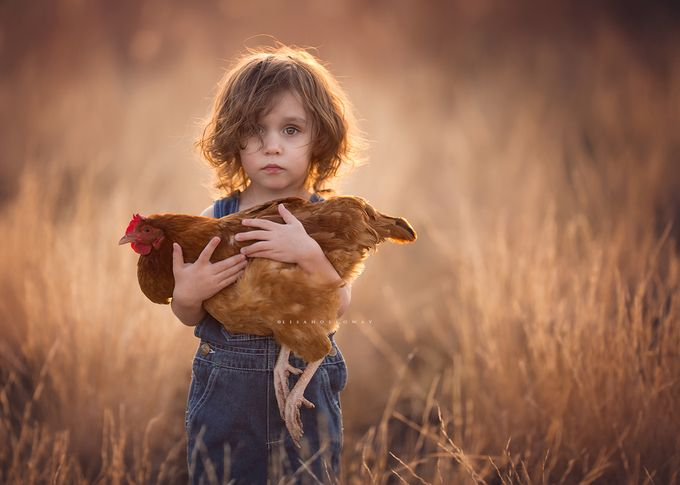 Elliott & His Hen by lisaholloway - Farms And Barns Animals Photo Contest