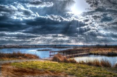Goose Pond Afternoon