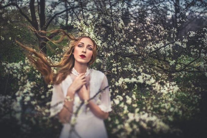 Spring by LaimaKavaliauskaite