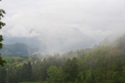 Lake Lucerne Mist