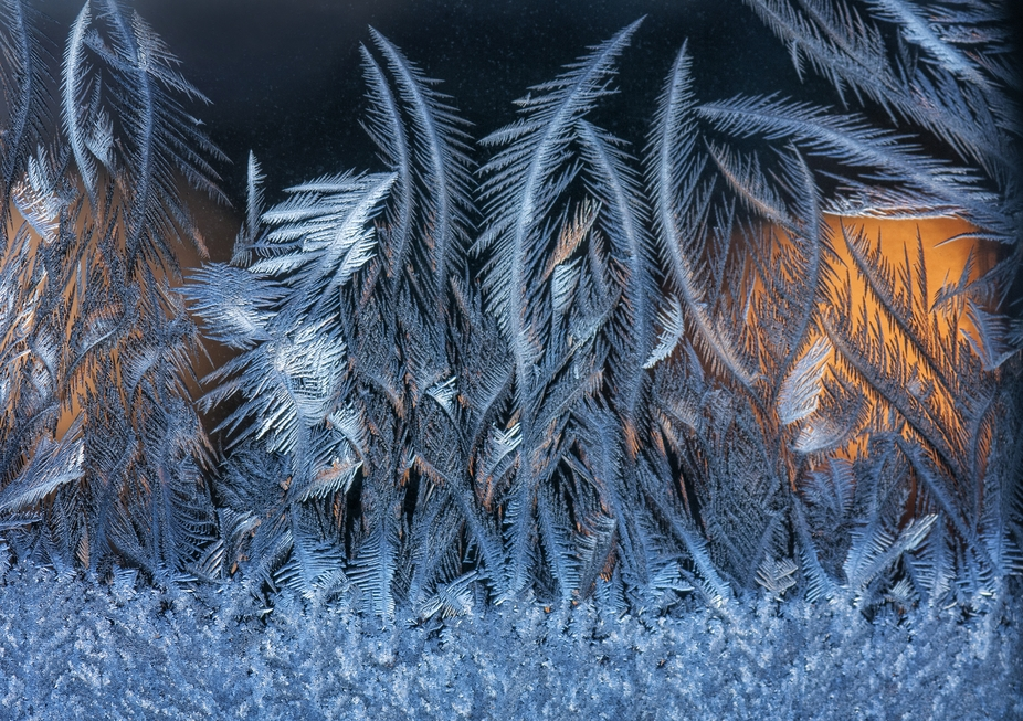 frost on my window at sunrise 1/14