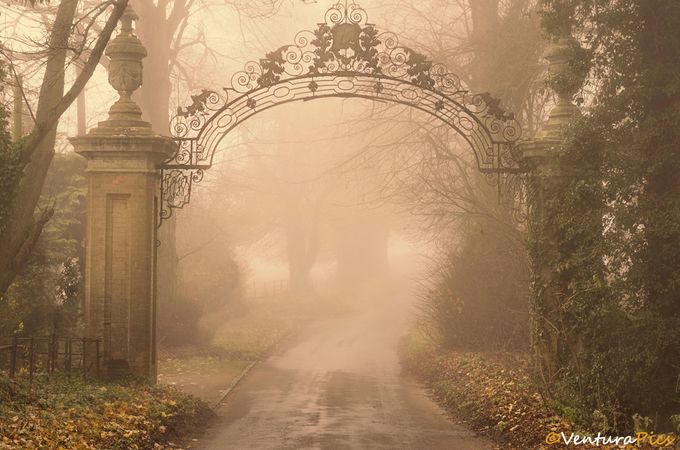 The Gateway by VenturaPics - Lost In The Fog Photo Contest