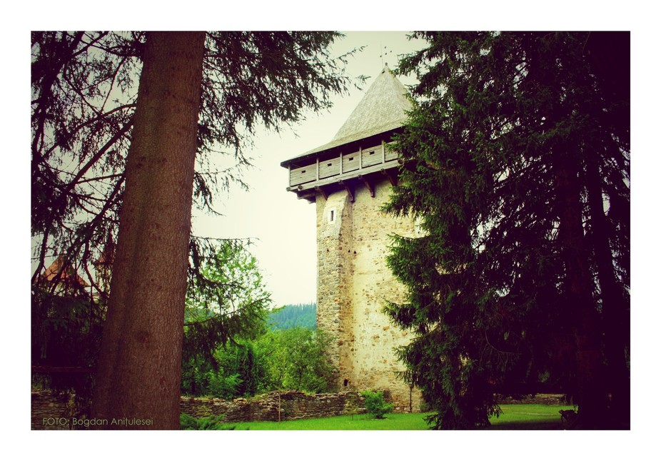 TURNUL PADURII - FOREST TOWER