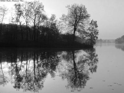 Mirrored Morning