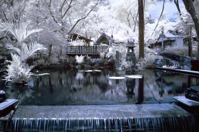 AK Pond