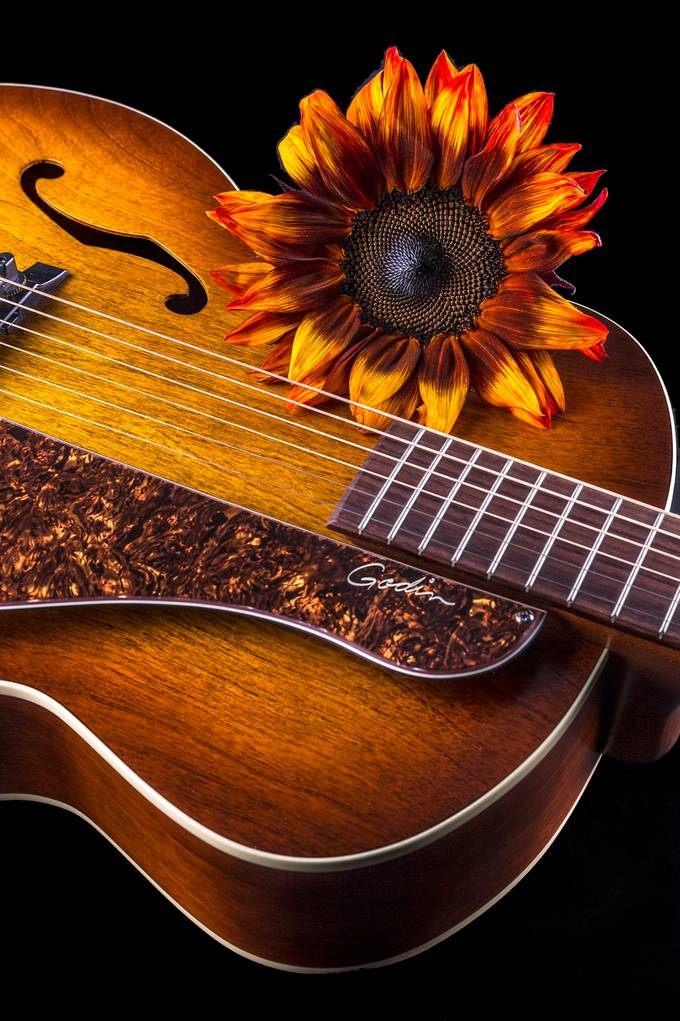 Matching Guitar & Flower by edstilwell - Commercial Style Photo Contest